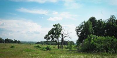 Фотографии и отзывы о коттеджном поселке «Первоцветово» (Заокский р-н Тульской области)