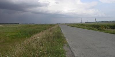 Фотографии и отзывы о коттеджном поселке «Живой Лес» (Коченевский р-н Новосибирской области)