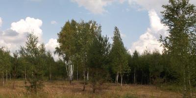 Фотографии и отзывы о коттеджном поселке «Верхняя Искань» (Заокский р-н Тульской области)