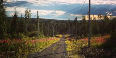 Фотографии и отзывы о коттеджном поселке «Родной» (Нижнесергинский р-н Свердловской области)