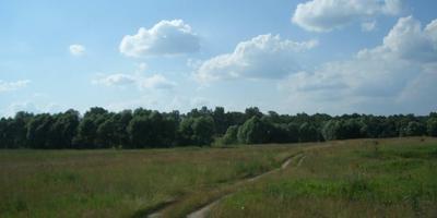 Фотографии и отзывы о коттеджном поселке «Новосельцево» (Заокский р-н Тульской области)