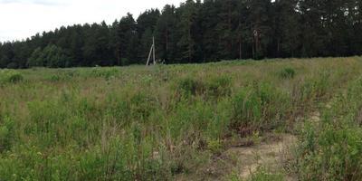 Фотографии и отзывы о коттеджном поселке «Усадьба» (Октябрьский р-н Свердловской области)