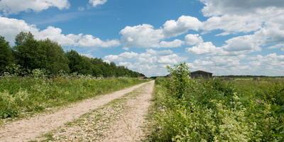 Фотографии и отзывы о коттеджном поселке «Участки в деревне Кошкино» (Заокский р-н Тульской области)