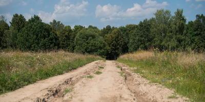 Фотографии и отзывы о коттеджном поселке «Приокская поляна-2» (Заокский р-н Тульской области)