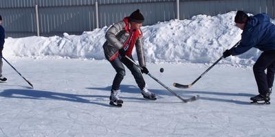 Хоккей на даче