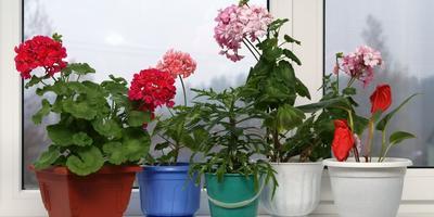 5 нежелательных цветов для детской комнаты