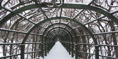 Зимние пейзажи в Архангельском