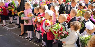 Букет из дачных цветов к 1 сентября