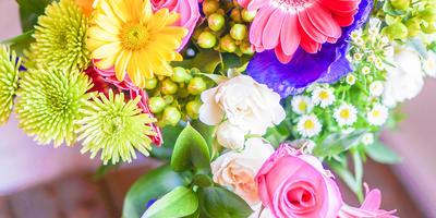 15 лучших цветов для срезки