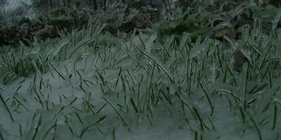 Ледяной дождь. Красиво, но опасно.