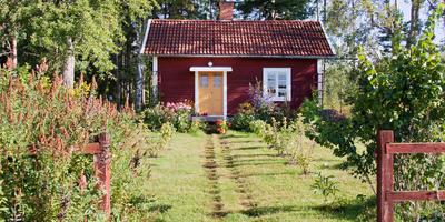 Как спланировать пространство на маленькой даче