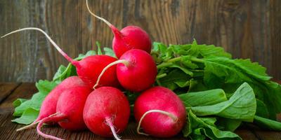 Редиска - хороший корнеплод