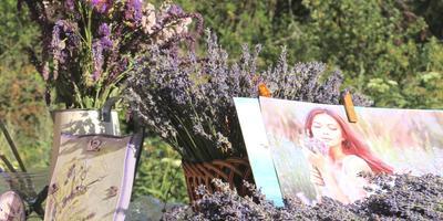 Садовые растения для красоты и здоровья кожи