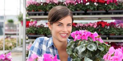 10 лучших цветов в горшках к 8 Марта