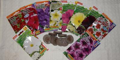 Отчет о получении посылки с семенами петунии от Аэлиты