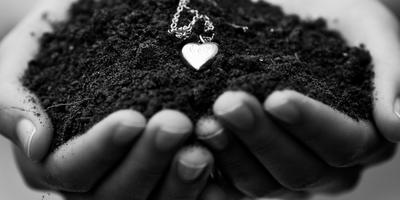 Природное совершенство чернозёма
