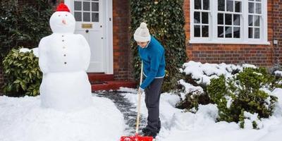 Сезонные работы в саду и огороде: первая неделя декабря