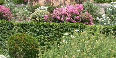 Зимнее укрытие террасного сада