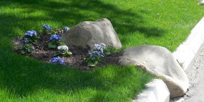 Удачное решение - включение камней в бордюры