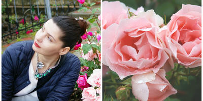 Современные садовые розы