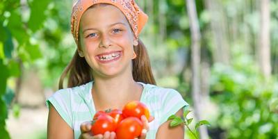 Самые ранние сорта томатов