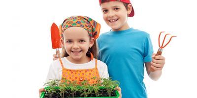 15 самых серьезных ошибок при выращивании рассады