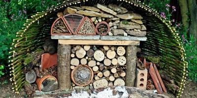 Как построить домик для букашек