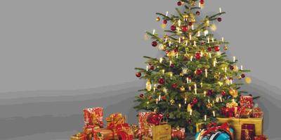 Как выбрать новогодний подарок для дачника? Подскажет GARDENA!