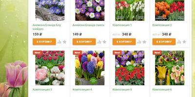 Время покупать: скидки на посадочный материал и семена