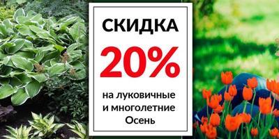 Какие скидки предлагают интернет-магазины семян и посадочного материала на этой неделе