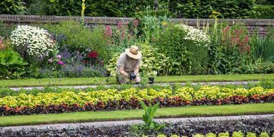Садоводство для удовольствия