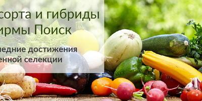 Семена овощей российской селекции. Авторская серия от Агрохолдинга ПОИСК