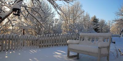 Секреты зимней привлекательности сада