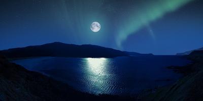 Под управлением Луны, или Как самостоятельно составить лунный посевной календарь