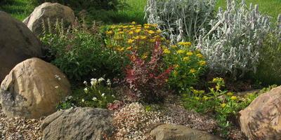 """Ландшафтный камень в подмосковном саду: как сделать хорошо, а не просто """"модно"""""""