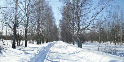 1 марта. Весне - дорогу!