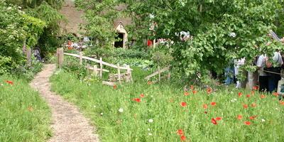 Садовая мода на дикую природу, или Экологические сады в центре внимания