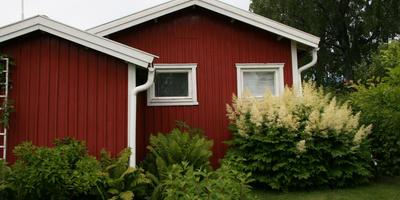 Горячий финский сад