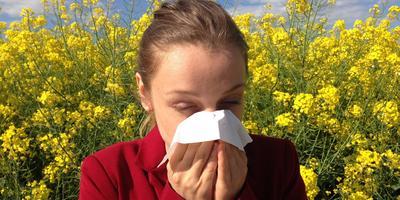 Рецепты здоровья: лечение аллергии травами - народные средства при поллинозе