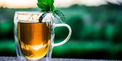 Рецепты здоровья: мята перечная от бессонницы