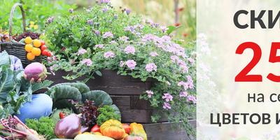 """Весенняя красота начинается... осенью! Осенние распродажи в интернет-магазине Агрофирмы """"Поиск"""""""