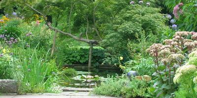 Сад по рецепту Карла Форстера
