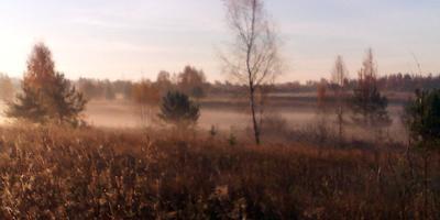 Осенние акварели, или Утро туманное...