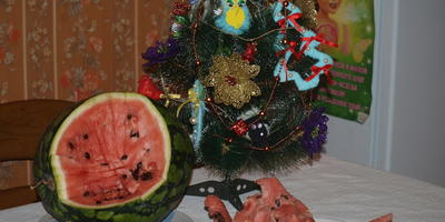 Арбуз к Новому году