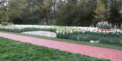 Сады Дюпона. 2 часть