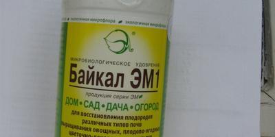 Подскажите: действительно ли удобрения на ЭМ препаратах эффективны?