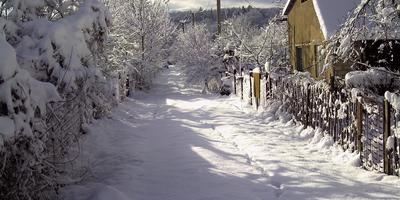 Зима на моей даче