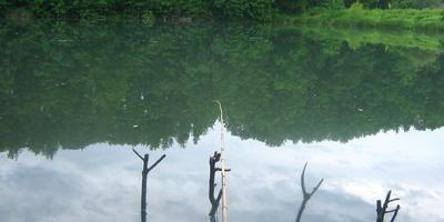 На рыбалку, или Как иногда можно отдохнуть садоводу-огороднику