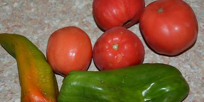 Судак, тушеный в томатном соусе