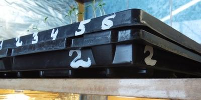 Маркировка кассет и ящиков для выращивания рассады